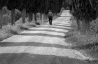 Charlie Waite on Tuscan White Road