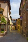 Dozza Street