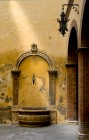 Ancient Well in Siena