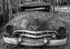 1951 or 1952 Cadillac at Old Car City USA, White, GA. (ZEISS Milvus 50mm f/2 macro on Nikon D850.)